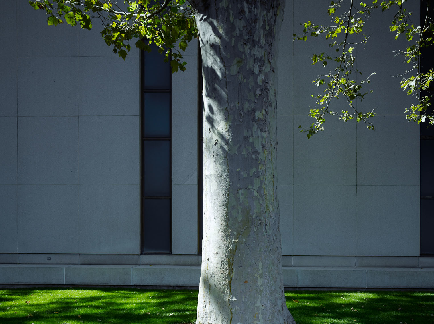 LDS_Temple_Square_048.jpg